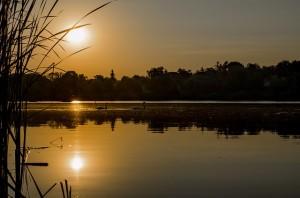 早朝のドナウ川