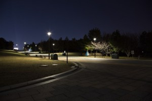 深夜の葛西臨海公園